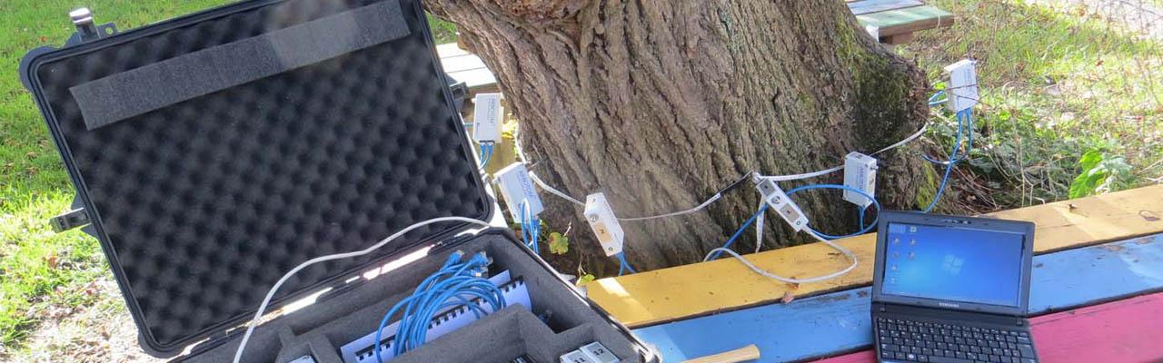 Baumkontrolle, Baumgutachten und arboristische Baubegleitung